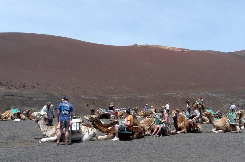 Lanzarote Reisebericht Bild-1