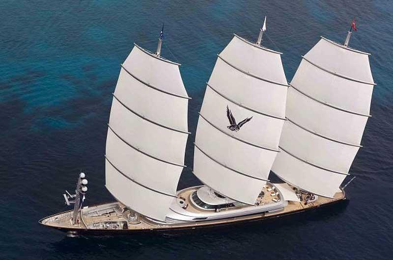 Maltese Falcon 06