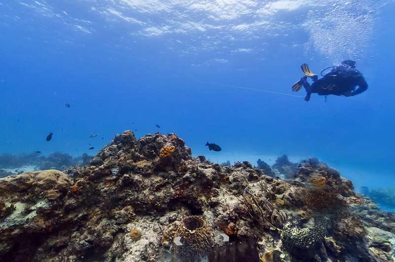 Google Seaview Bilder-03