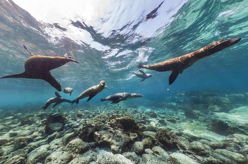 Google Seaview Bilder-05