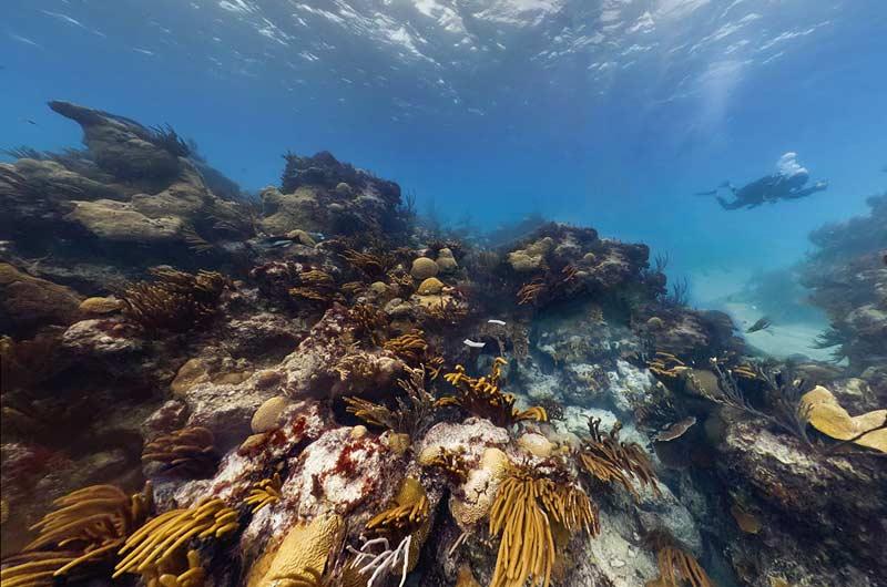 Google Seaview Bilder-08