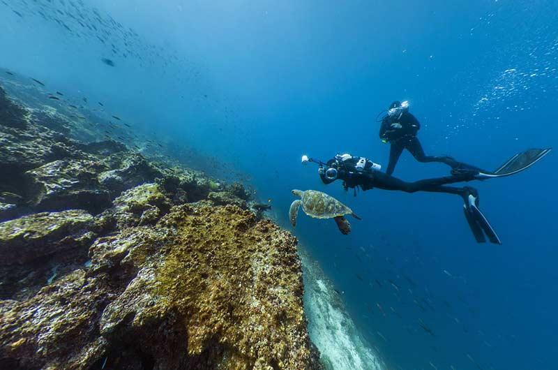 Google Seaview Bilder-10