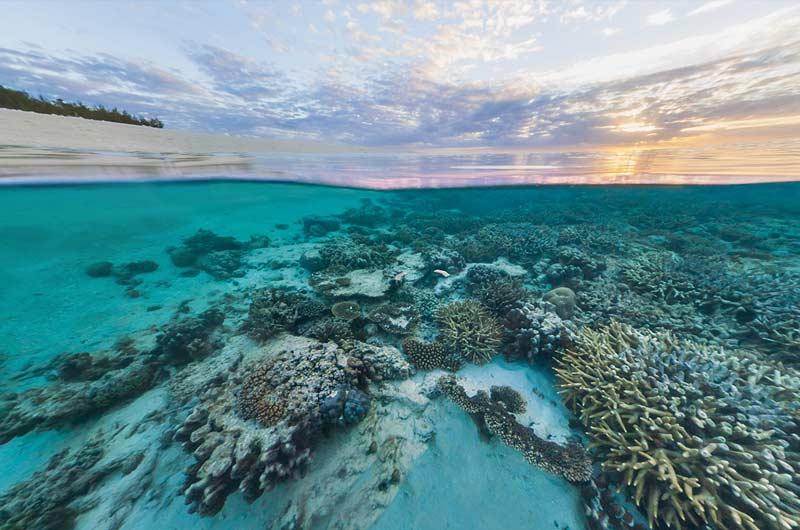 Google Seaview Bilder-11