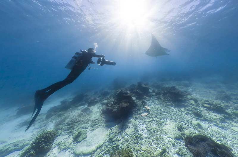 Google Seaview Bilder-15