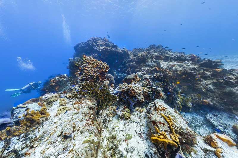 Google Seaview Bilder-16