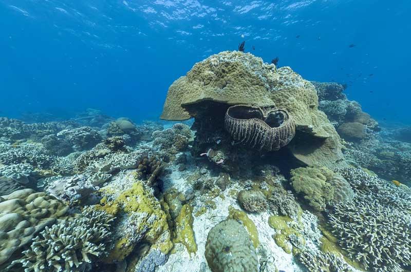Google Seaview Bilder-19