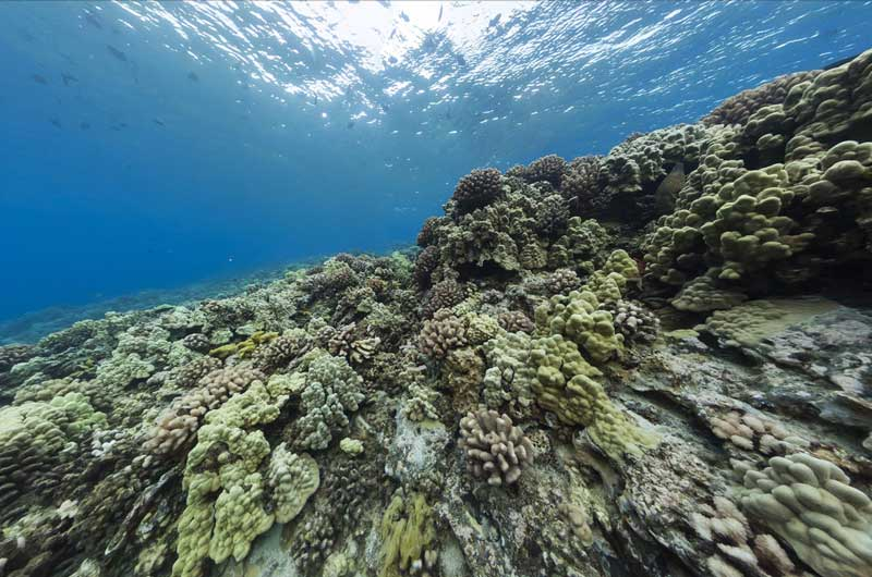 Google Seaview Bilder-20