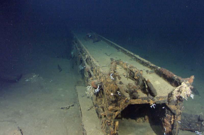 Paul Allen Expedition Schlachtschiff Musashi Bild-03