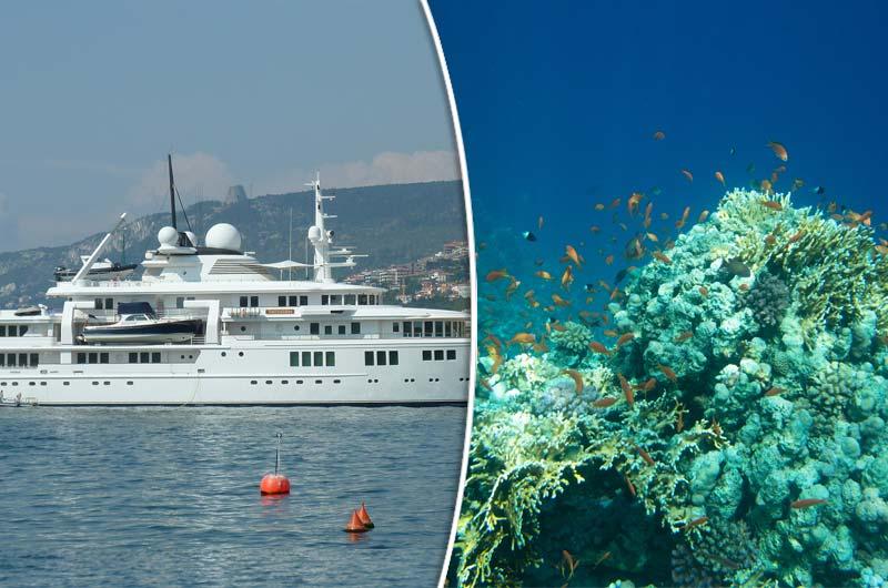 Superyacht Von Microsoft Mitgrunder Zerstort Korallenriff Boot Online