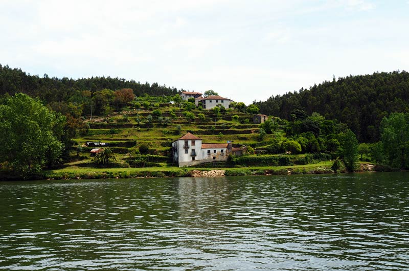 Yachtcharter Portugal Feeldouro | Day 2 | Image-11
