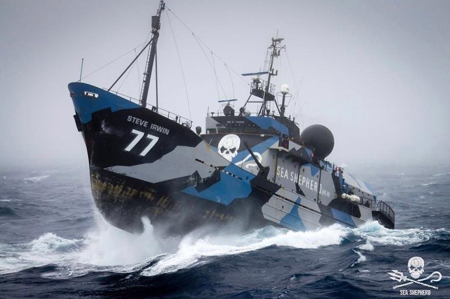 Moby Dick Umweltpreis 2019 - Sea Sheperd